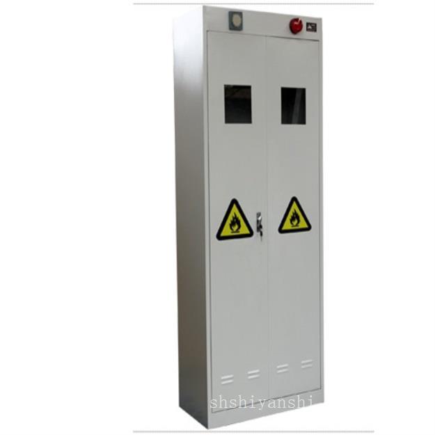 上海中试实验室设备-上海中试智能报警气瓶柜
