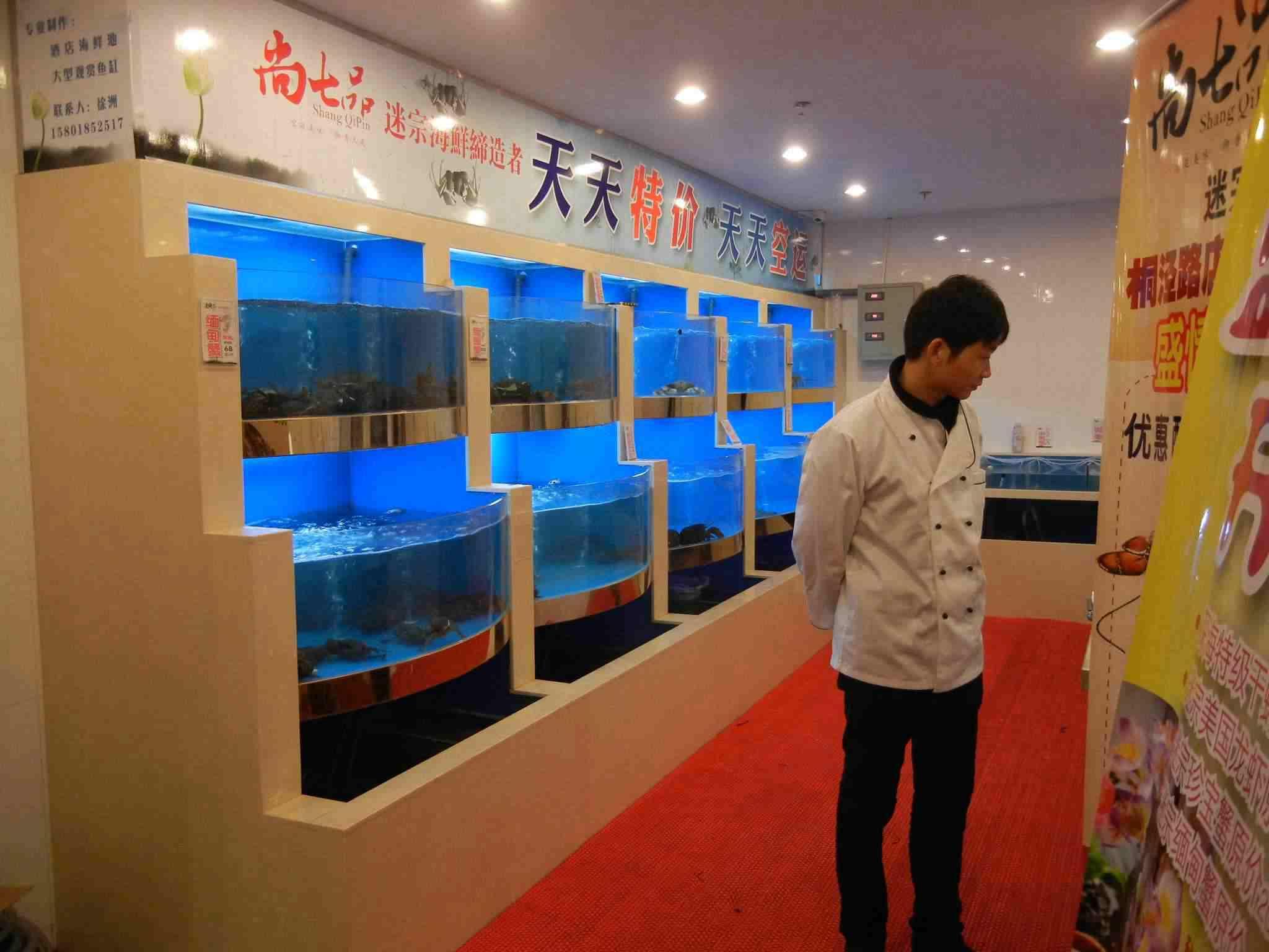 苏州海鲜池鱼缸定制