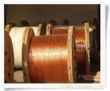 上海电工软铜绞线