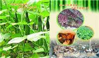 无公害绿色食品