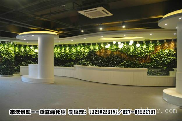 上海市专业屋顶绿化施工队,上海市景观植物背景墙,上海市室内绿化植物墙