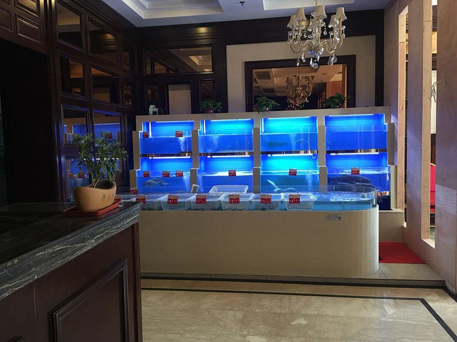 常州海鲜池鱼缸定制