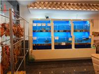 兴化河畔老渔铺1
