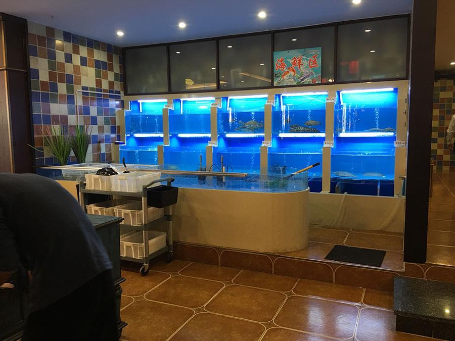 镇江海鲜池鱼缸定制