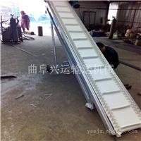 加长加宽1米长尼龙线皮带输送机 兴运机械厂家批发价销售