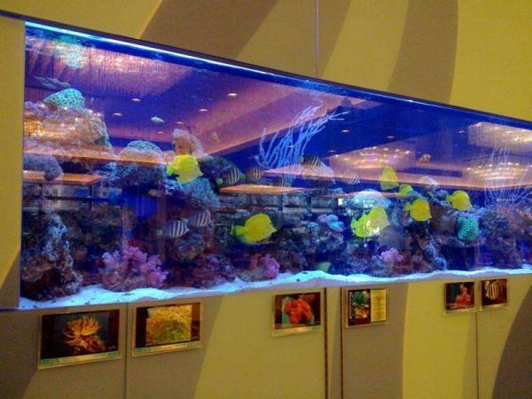 亚克力鱼缸定做-酒店观赏鱼缸设计