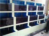 泰州鱼缸海鲜池/酒店海鲜