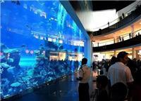 大型商场观赏亚克力鱼缸定做-伊斯坦布尔工程