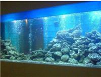 亚克力鱼缸定做-上海各个区别墅鱼缸保养维护