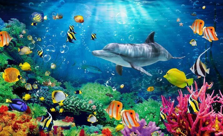 海底世界游乐园-海洋馆建设-亚克力鱼缸定做