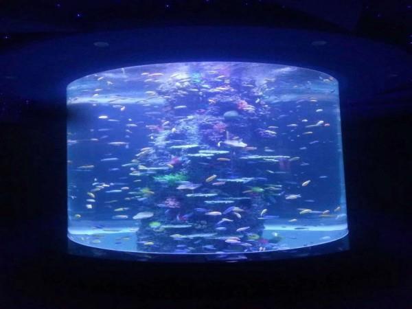 亚克力鱼缸的水下造景技术特点