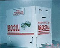 上海PP中空板箱生产