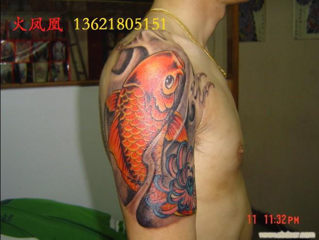 锦鲤纹身图