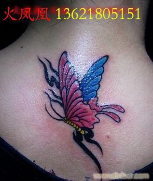 蝴蝶纹身图片5