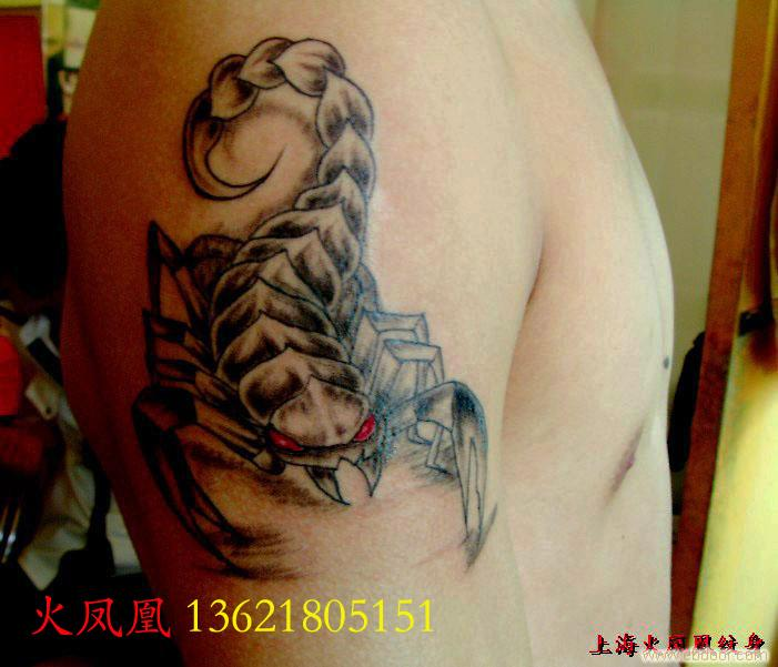 想纹个小小的蝎子我是女生 能打麻药么 十八 -纹身纹身 想纹蝎子 纹过