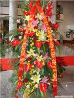 上海宾馆花卉租赁公司