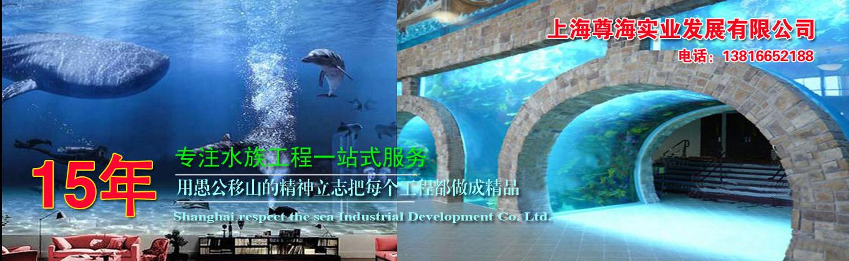 上海尊海实业发展有限公司