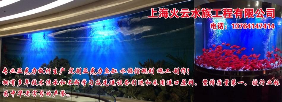 定做亚克力鱼缸-亚克力水族箱-上海大型亚克力鱼缸厂家直销