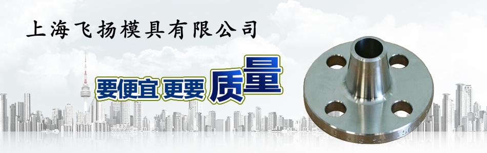上海飞扬模具有限公司