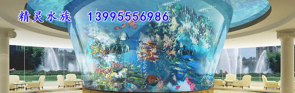 武汉鱼缸定做-武汉海洋精灵水族工程有限公司