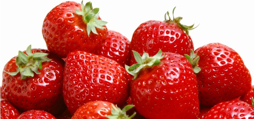 采摘新鲜草莓-体验农家生活