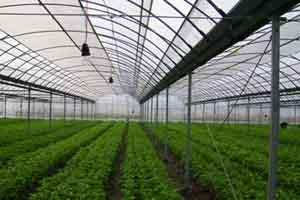 农业生产应用