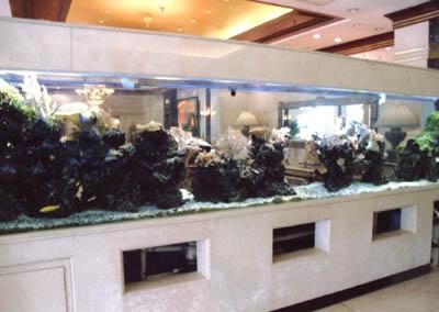 2012新款亚克力鱼缸