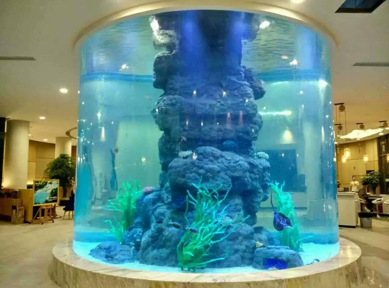 最新亚克力圆柱鱼缸工程案例