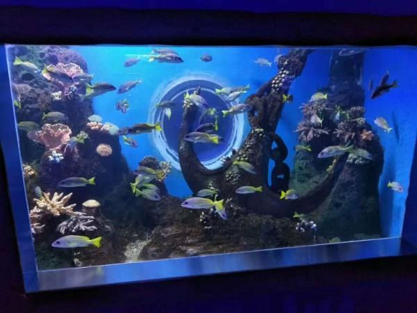 长沙海洋馆